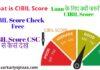 What is Cibill Score | How to Calculate Cibil Score | CSC CIBIL Check